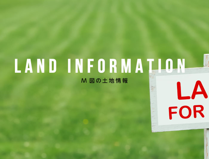 Land INFORMATION M図の土地情報